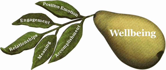 Wellbeing= Positive Emotion, Engagement, Relationships, Meaning, Accomplishment